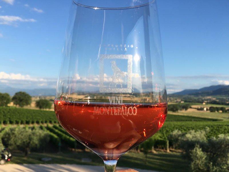 A glass of Sagrantino di Montefalco DOCG wine